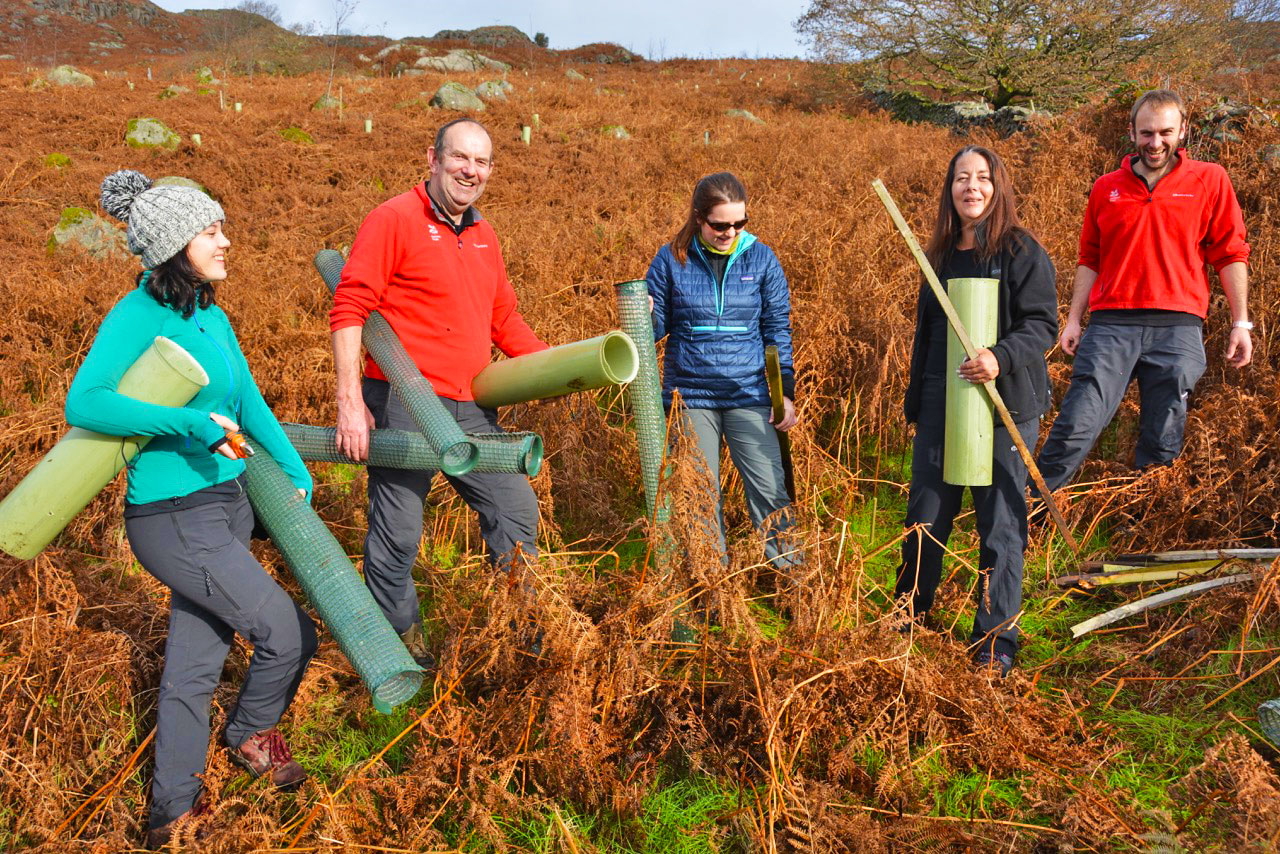 Helping out Friends of the Lake District