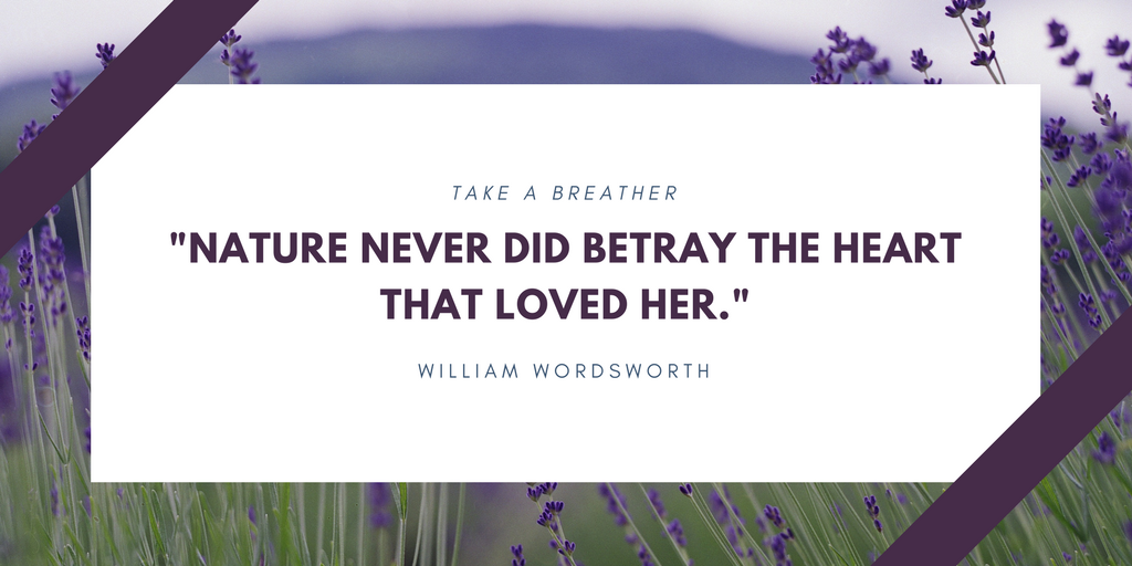 William Wordsworth Quote on Nature