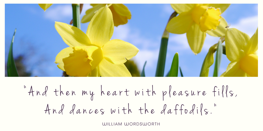 Wordsworth daffodils Quote