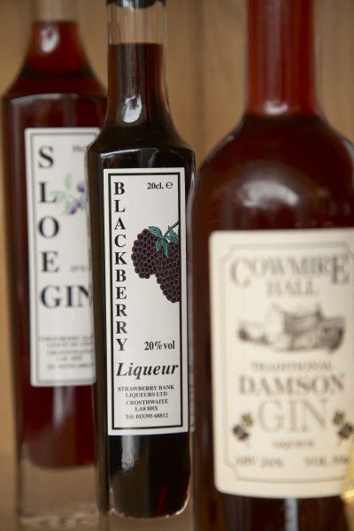 Visit Lyth Valley for Damson Gin