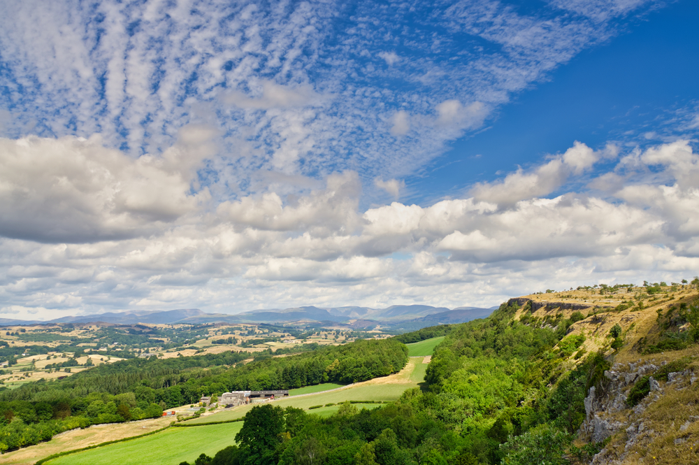 Lyth Valley